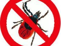 ВНИМАНИЕ!!! ГОРЯЧАЯ ЛИНИЯ! По вопросам профилактики «клещевых» инфекций.